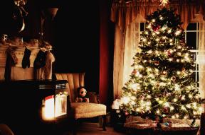 50906-christmas-tree